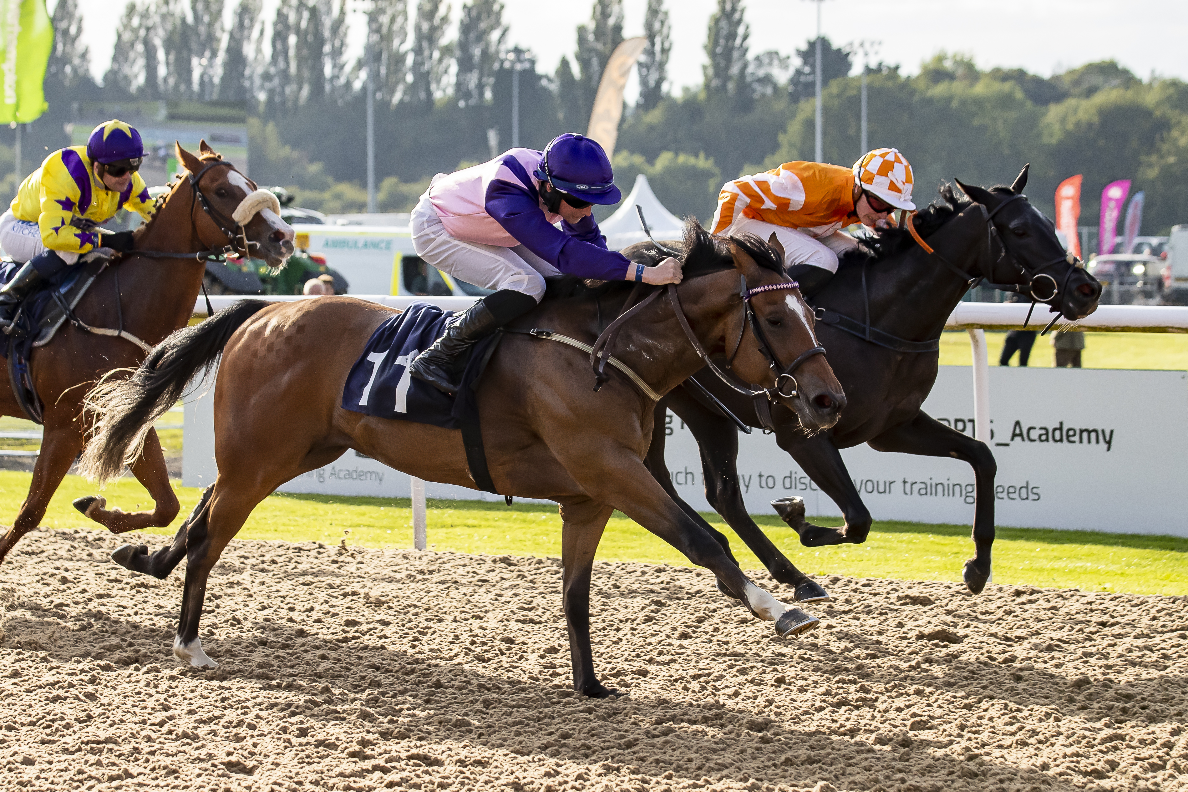 Two Hearts holds on to beat Port Noir a nose at Wolverhampton over 6f. Photo:- J Hipkiss
