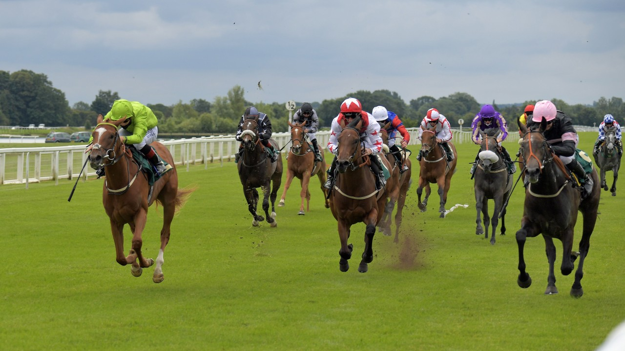 Gift List on the left just fails to get up on debut at Ripon - Photo by Racing Post